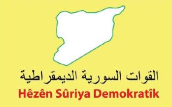 SDF balance sheet: 58 mercenaries killed