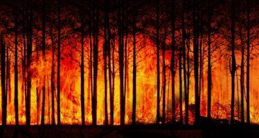 Crísis diplomática a raíz de los incendios en la Amazonía brasileña