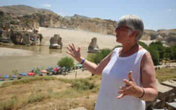 EUROPEAN MP JULIE WARD: SAVE HASANKEYF