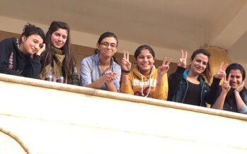 The Feminization of Kurdish Politics: A Guerrilla's Sociological Analysis