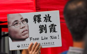 To the Chinese Comrades, Please Release Poet Liu Xia